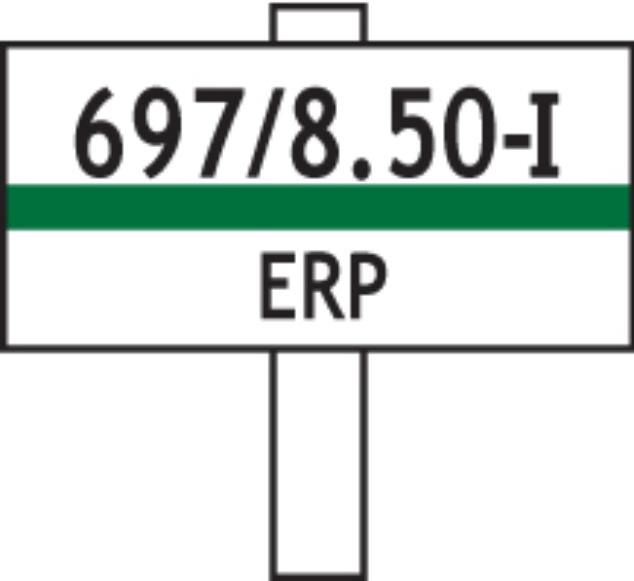 ERP-I